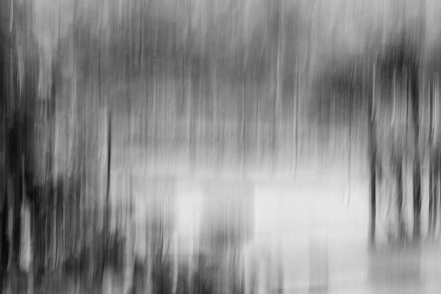 One Rainy Day #7 : Monochromes : visual meanderings by vt fine art photography